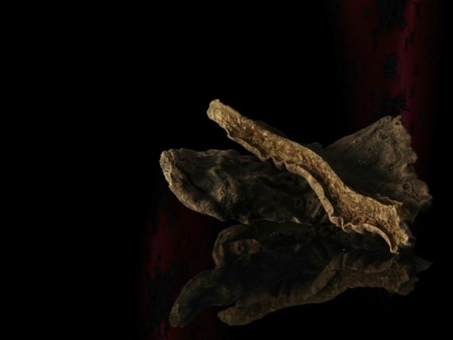Oris botánico de la ginebra Brockmans